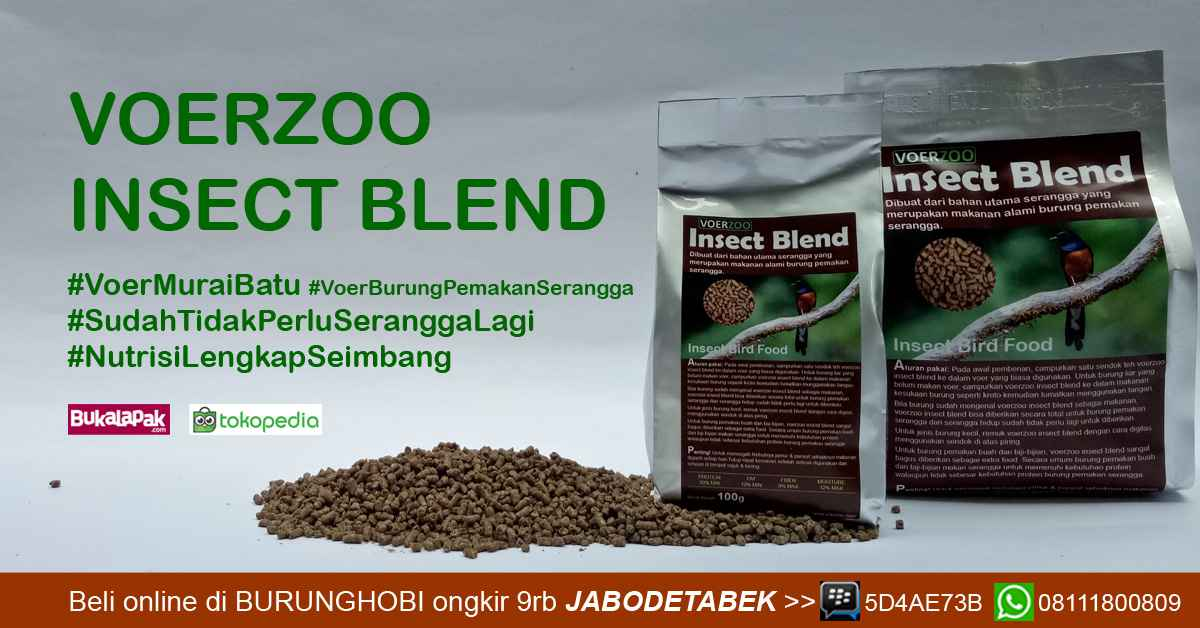 Voerzoo Insect Blend